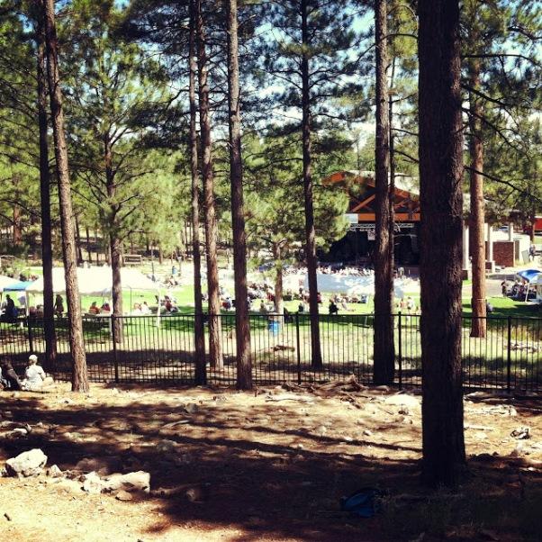Arizona Camping, Flagstaff Arizona